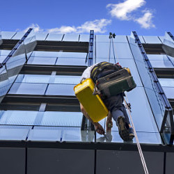 Professional Window Cleaning Advantages