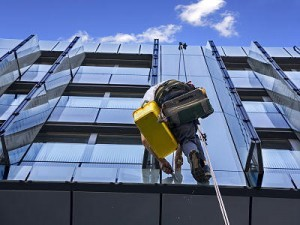 Professional high-rise window cleaner