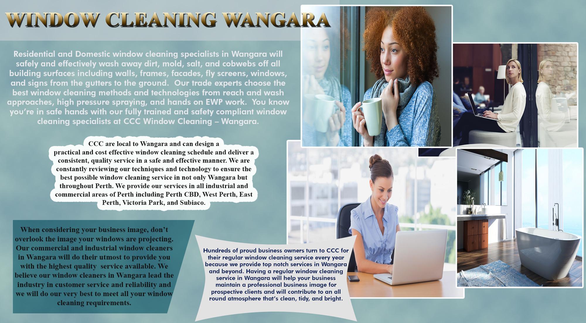 Wangara Infographic