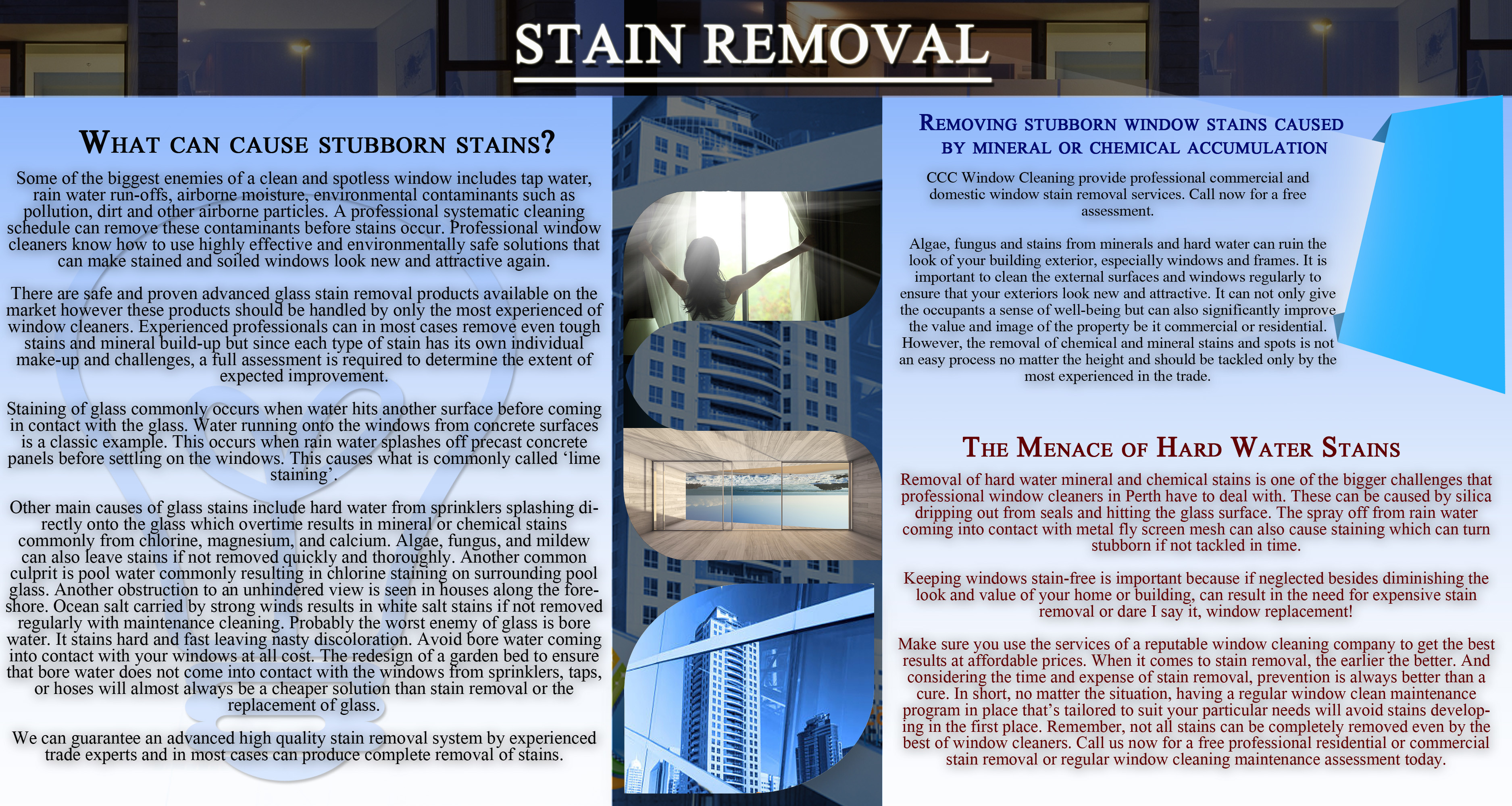 Stain Removal Infographic